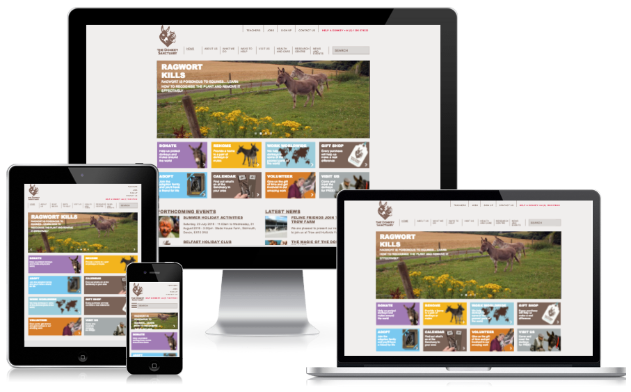 Responsive theme for The Donkey Santcuary